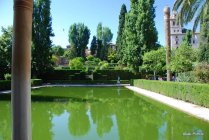 alhambra-granada (15)