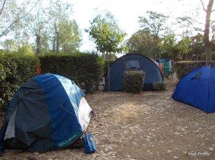 Camping Montrose (3)