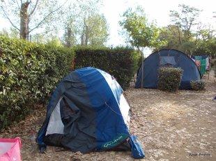 Camping Montrose (4)