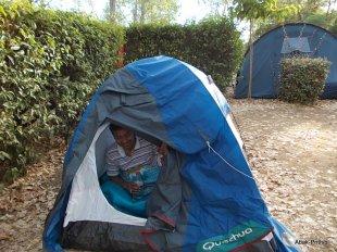 Camping Montrose (8)