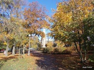 Gothenburg- Sweden (3)