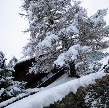 Murren - Switzerland (11)