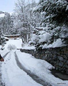 Murren - Switzerland (6)