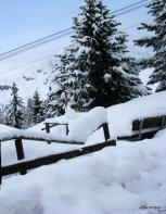 Murren - Switzerland (8)