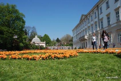 Salzburg-Austria (4)