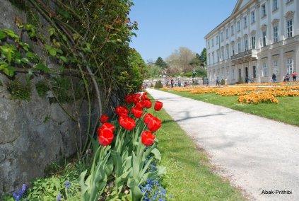 Salzburg-Austria (6)
