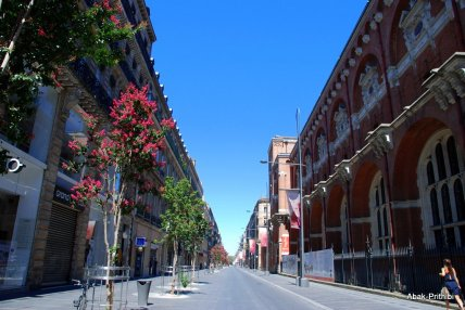 Toulouse-France (11)