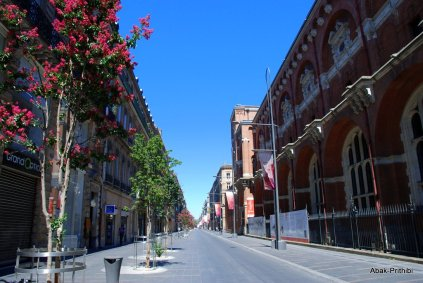 Toulouse-France (12)