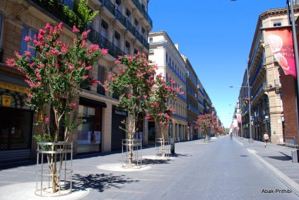 Toulouse-France (15)