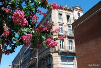 Toulouse-France (19)
