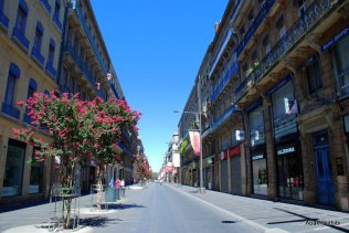 Toulouse-France (20)