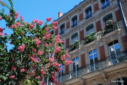 Toulouse-France (23)