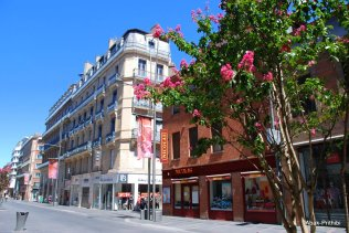 Toulouse-France (26)
