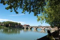 Toulouse-France (59)
