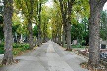 Mirogoj-Zagreb (13)