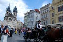 Prague (12)