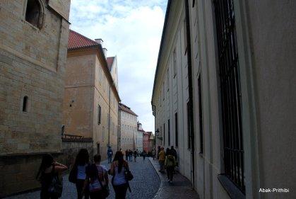 Prague Castle (21)