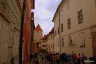 Prague Castle (23)