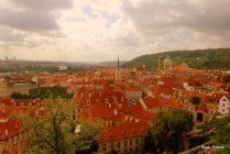 Prague Castle (26)