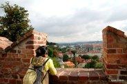 Prague Castle (28)