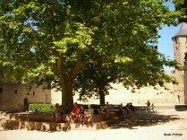Carcassonne, France (10)