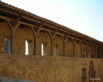 Carcassonne, France (15)