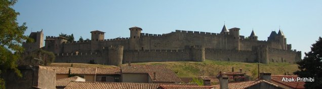 Carcassonne, France (31)