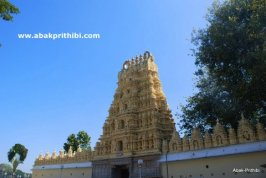Magnificent Mysore, India (4)