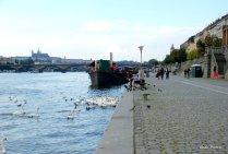 Prague (26)