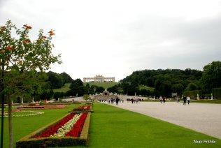 Vienna (18)