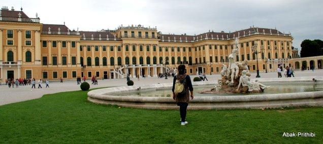 Vienna (5)