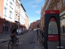 Velo - Toulouse (11)