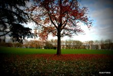 Fall - Toulouse 2013 (25)