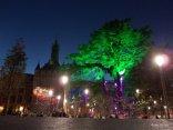 Marche de Noel, Toulouse (8)