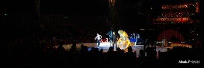 Cirque de noel-Toulouse 2013 (5)
