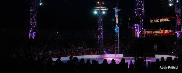 Cirque de noel-Toulouse 2013 (6)