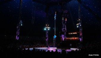 Cirque de noel-Toulouse 2013 (7)