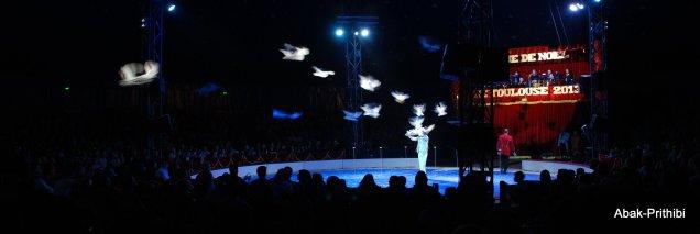 Cirque de noel-Toulouse 2013 (8)