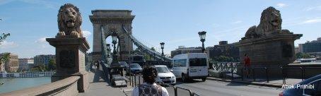 Danube-Budapest-Hungary (6)