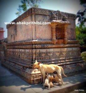 Adalaj Stepwell, Gujarat (33)