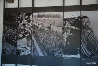 Dachau concentration camp (13)