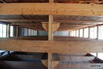 Dachau concentration camp (21)