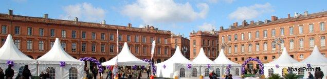Fête de la violette, Toulouse (1)