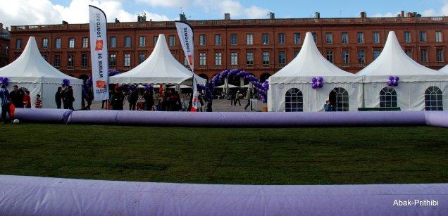 Fête de la violette, Toulouse (12)