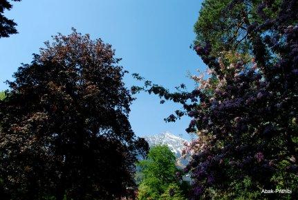 Innsbruck, Austria (12)
