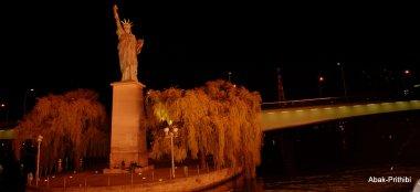 Paris night (30)