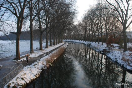 Toulouse-snow fall (13)
