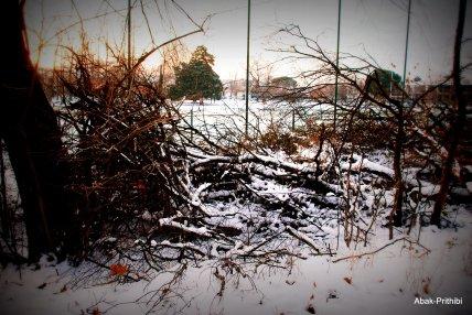 Toulouse-snow fall (20)