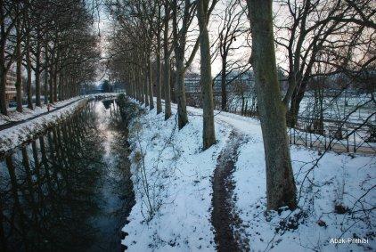 Toulouse-snow fall (22)