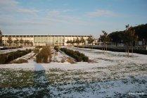 Toulouse-snow fall (6)